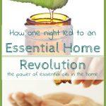 Guest Post: Essential Oils Home Revolution