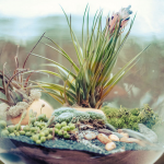 9 Ideas For Nature-Inspired Decor